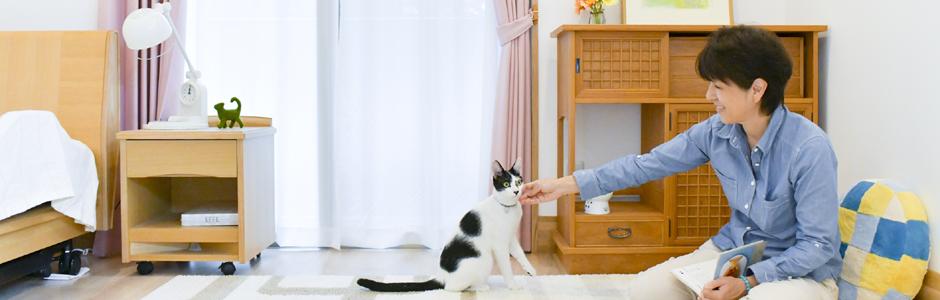 猫と暮らす ひとり暮らしの女性のためのQ&A